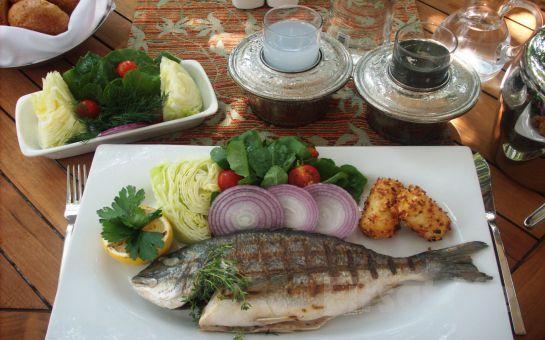 Boğazın İncisi Rago Balık'ta Lezzetli Balıklar Eşliğinde Rakı Balık Fırsatı (Balık, Rakı, Meze, Börek, Salata, Laz Suflesi ve Daha Fazlası)