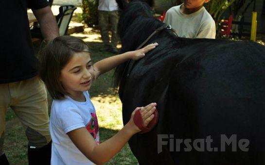 Atlıtur'dan Çocuklara Yönelik Lonj Sahasında At Binme Etkinliği!
