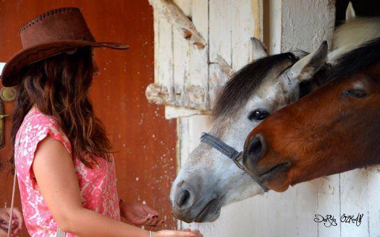 Aşkını At Üstünde Anlat! Sarıyer Atlı Tur'dan 2 Kişi At Binme + Şömine Karşısında Çay ve Kahve Keyfi!
