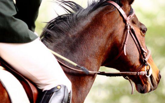 Doğada Özgürce At Binme Keyfi İçin Sarıyer Atlıtur'da 4 Ders 140 Dk. Binicilik Eğitim Fırsatı