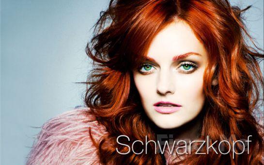 Kozyatağı SaloonS Güzellik'ten, L'Oréal Paris ve Schwarzkopf Ürünleriyle Dip Boya, Kesim, Saç Bakımı, Fön Fırsatı