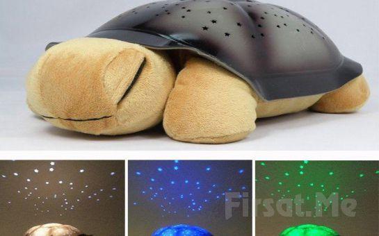 Odada Harika Bir Gece Ve Gökyüzü Görüntüsü Sağlayan Işıklı Kaplumbağa!