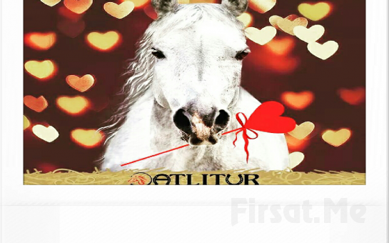 Aşkını At Üstünde Anlat! Sarıyer Atlı Tur'dan 2 Kişi At Binme Keyfi!