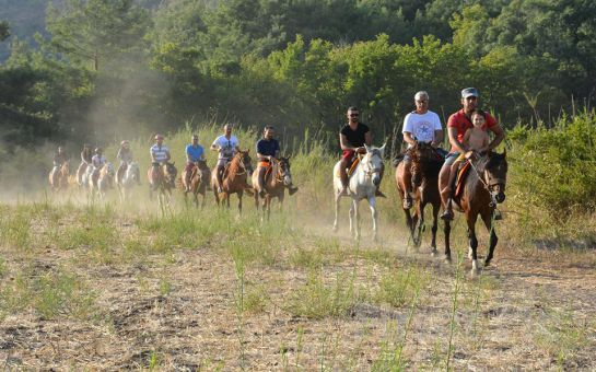 Marmaris'te Profesyonel Eğitmenler Eşliğinde At Safari Turu