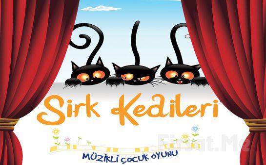 Çocuklarınız İçin 'Sirk Kedileri' Tiyatro Bileti