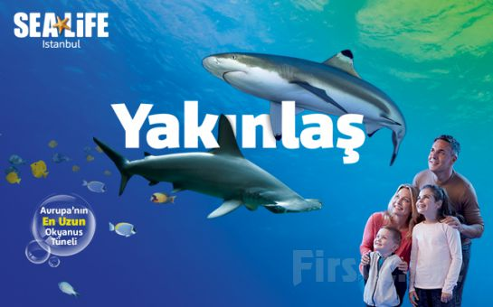 SEA LIFE İstanbul Akvaryum Giriş Bileti (Hergün Geçerli)