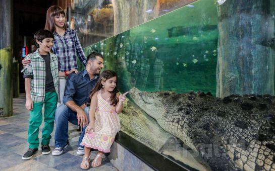 Emaar Akvaryum İstanbul & Sualtı Hayvanat Bahçesi Giriş Bileti