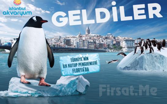 Dünya'nın En Büyük Tematik Akvaryumu Florya 'İstanbul Akvaryum' Giriş Bileti