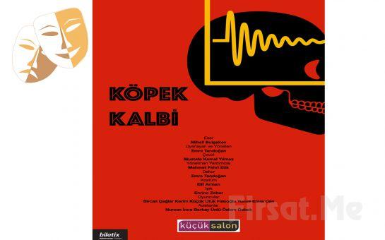 Mihail Bulgakov'un Aynı Adlı Romanından Uyarlanan 'Köpek Kalbi' Tiyatro Oyunu Bileti