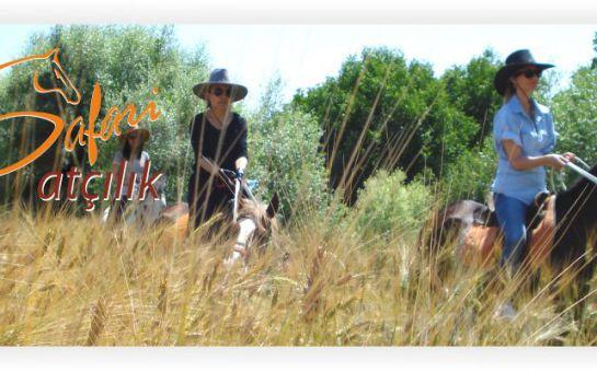 Akyurt Safari Atçılık'ta Doğada 1 Saatik At Binme
