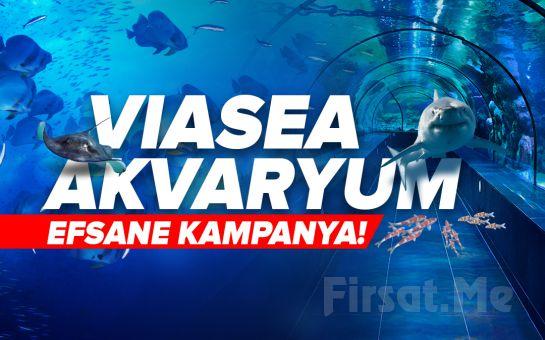 Viaport Marina Tuzla Viasea Akvaryum Bileti