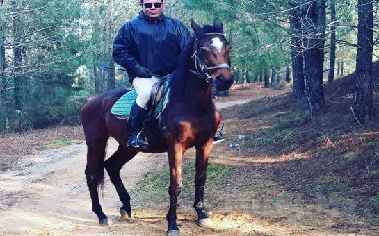 Atlı Tur'da Sahilde veya Arazide At İle Gezinti ve Binicilik Eğitim Seçenekleri