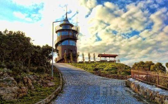 Bosphorus Organization'la Adalar Turu ve Limitsiz Açık Büfe Öğle Yemeği