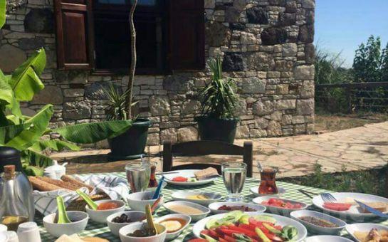 İzmir Urla Ceviz Reçeli Muhabbet Sofrasında Doğa ile Başbaşa Hafta İçi Serpme Kahvaltı Keyfi!