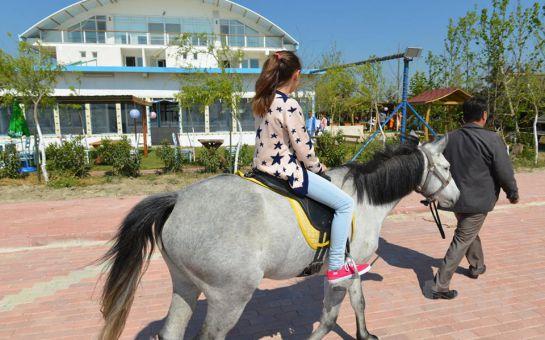 Denize Nazır Mavi Çatı Butik Otel Sultanköy'de Udi Raci ve Eşliğinde Leziz Akşam Yemeği ve Konaklama Seçenekleri