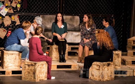 7 Şahane Kadınla Nereye Gitti Bütün Çiçekler? Tiyatro Oyunu Bileti