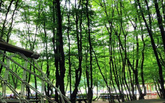 Ayşe Teyze Bağ Bahçe'de Doğayla İç İçe Lezzetli Ramazan İftar Menüleri