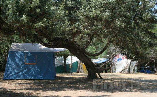 Revolution Dil Okullarından Didim Orman Parkı'nda 'Mini Londra Yaz Okulu Kampı'