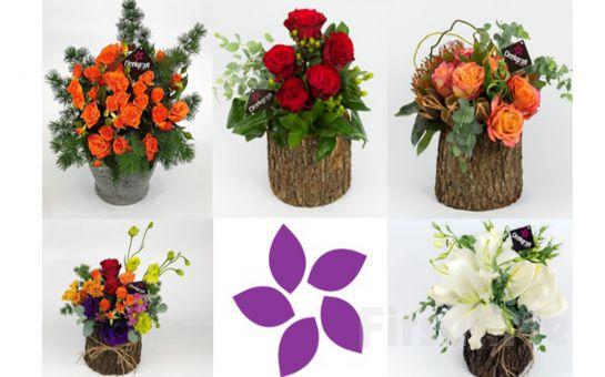 Çiçekgrafi'de Özel Gün ve Kutlamalarınız için Özel Tasarım Çiçeklerde %20 İndirime Ek %10 İndirim Sağlayan Kod