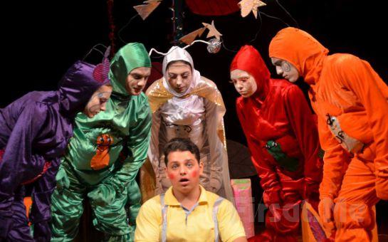 'Çalışkan Karıncalar' Müzikli Çocuk Tiyatro Oyun Bileti