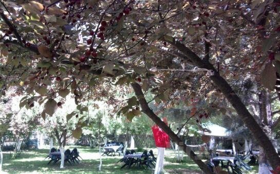 Polonezköy Hayal Bahçesi'nde Mangal Keyfi Fırsatı