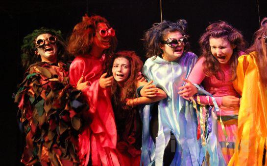 Minik Seyirciler için 'Kuşlar' Müzikli Tiyatro Oyun Bileti