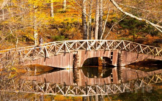 Miki Tur'dan Her Pazar Günübirlik Yedigöller Doğa Turu