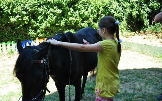 Atlıtur'dan Çocuklara Yönelik Lonj Sahasında At Binme Etkinliği