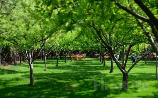 Gölbaşı Gold & Garden'da Yemyeşil Bir Bahçede Enfes İftar Menüleri