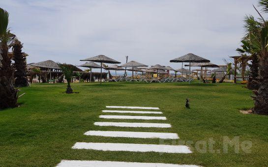 Çeşme Dharma Beach Club'ta Tüm Gün Plaj Girişi, Şezlong, Şemsiye, Makarna ve Hamburger Menü Seçenekleri