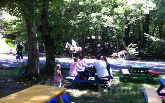 Sarıyer Life Park'ta Kahvaltı Keyfi, Pony ya da At Binme Fırsatı