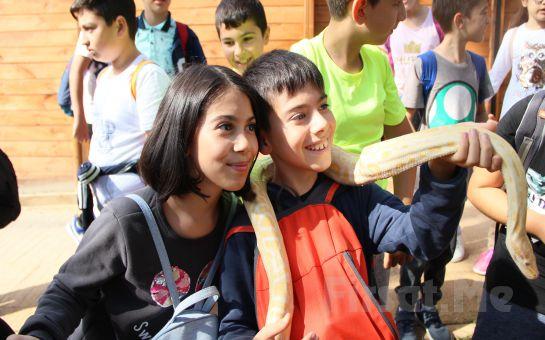 Park Of İstanbul Çekmeköy, Macera Park ve Hayvanat Bahçesi Giriş Biletleri