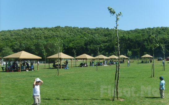 Polonezköy'ün Muhteşem Doğasında Park Asya Piknikte Mangal Keyfi