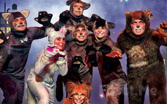 Çocuklarınız İçin Eğlenceli 'Kediler Sokağı Müzikali' Tiyatro Oyunu Bileti