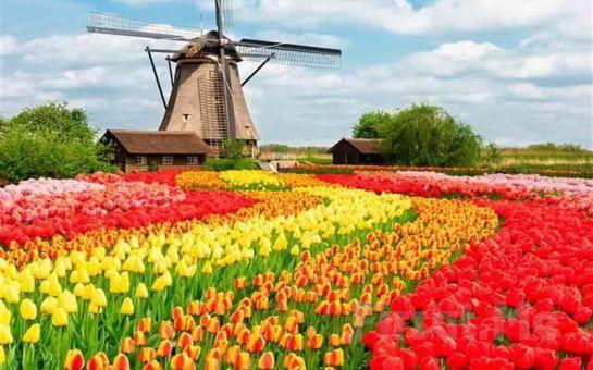 Tatil Büfesi'nden Pegasus Hava Yolları Tarifeli Seferi İle 4 Gün Amsterdam Turu