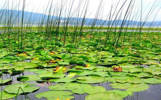 Bu Hafta Sonu Doğa İle Randevunuz Var Paytur'dan 1 Gece 2 Gün Yarım Pansiyon Konaklamalı Göller, Şelaler ve Yedigöller Turu