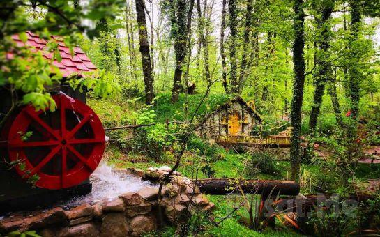 Turdayım.com'dan Hereke'de Serpme Kahvaltı ve Öğlen Yemeği Dahil Günübirlik Maşukiye, Ormanya ve Abant Turu