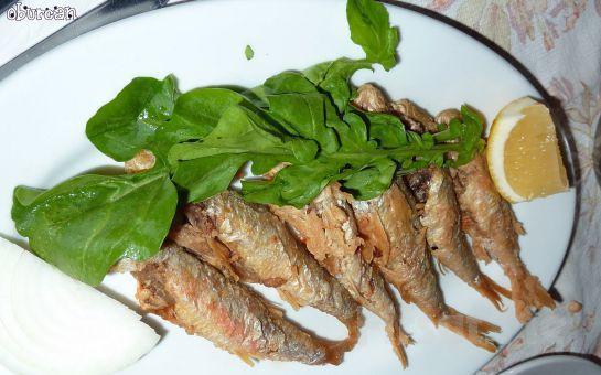 Paytur'dan, Balık Menü İkramıyla Günübirlik MUDANYA, TİRİLYE, GÖLYAZI, İZNİK TURU
