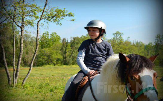 Yemek Sonrası At Binme Keyfi Atlı Tur'da Schnitzel Menü ve At İle Gezinti Fırsatı