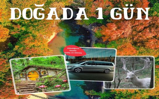 Sizlere Özel İstanbul'dan Kalkışlı Kocaeli Ormanya Doğal Yaşam Parkı'ına VIP Araçlarla Gidiş Dönüş Transfer Hizmeti