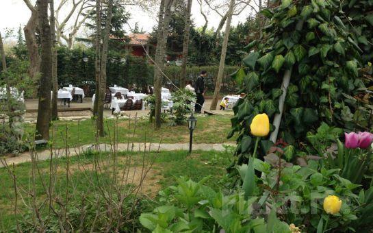 Emirgan Meyyali'de Asırlık Çınar Ağaçları Altında Serpme veya Açık Büfe Kahvaltı Keyfi!