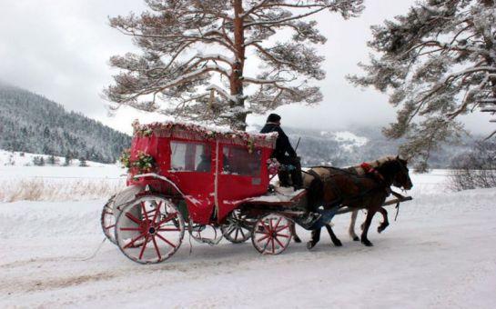 Paytur'dan Sevgililer Gününe Özel 2 Gece 3 Gün Yarım Pansiyon Romantik Kartepe + Sapanca + Abant + Göynük + Sünnet Göl Turu!