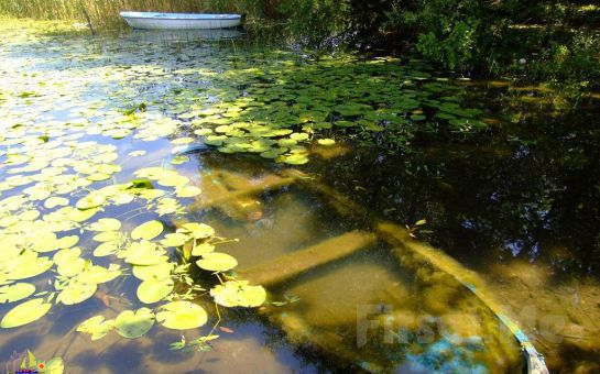 5* Elmas Garden İnn Konaklamalı ve SPA Kullanımlı 2 Günlük Yedigöller + Yığılca Cenneti + Sapanca + Maşukiye Doğa Turu!