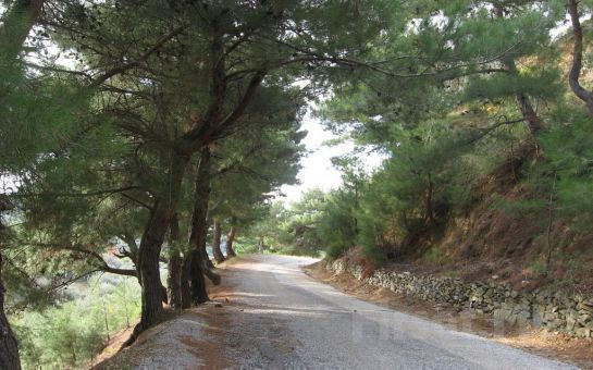 Ali Baba Tour'dan 1 Gece Yarım Pansiyon Konaklamalı Assos + Kaz Dağları + Ayvalık + Cunda Adası Turu!