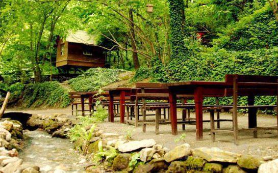 Tur Dünyası'ndan, Mangal Seçenekli Öğlen Yemeği, Günübirlik Maşukiye + Sapanca Doğa Keyfi Turu! (Ek Ücret Yok!)