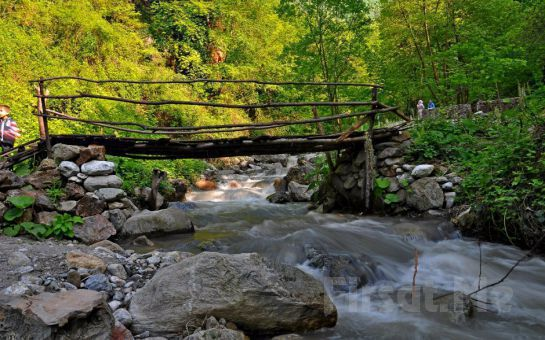 Tur Dünyası'ndan 1 Gece 2 Gün Ottoman Otel'de Yarım Pansiyon Konaklama + Kartepe Kayak + Sapanca + Maşukiye Turu
