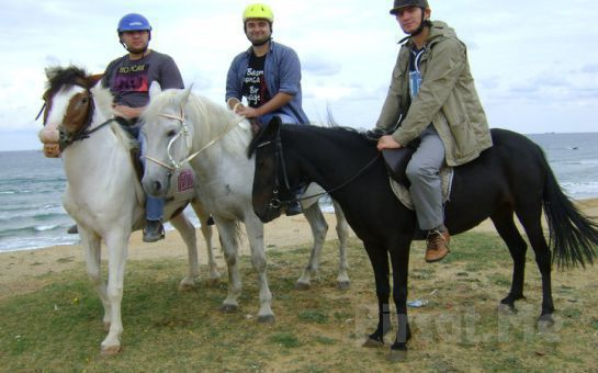 Sarıyer Atlıtur'dan Doğada Özgürce At Binme Keyfi Gözleme ve Çay İkramı ile!