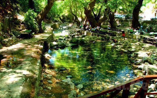 Tatil Çarşısı'ndan Her Pazar Günübirlik Kazdağları Doğa ve Treking Turu