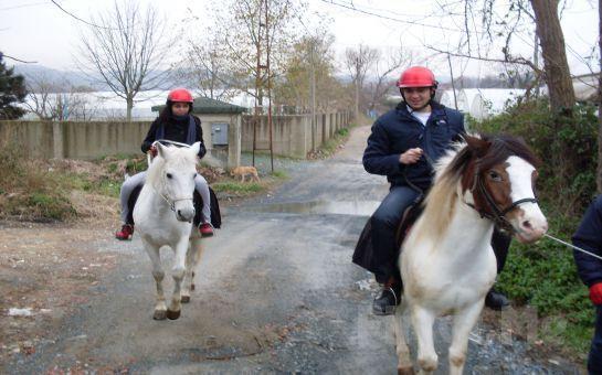 Küçük Bir At Çiftliğinde Konaklamanın ve Yeni Deneyimlerin Tadını Çıkarma Fırsatı!