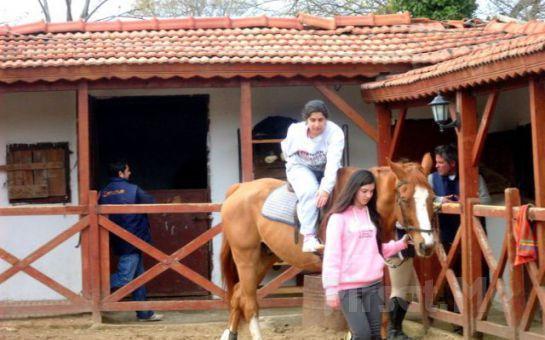 Küçük Bir At Çiftliğinde Konaklamanın ve Yeni Deneyimlerin Tadını Çıkarma Fırsatı